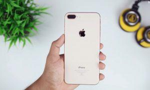 Mengandalkan Kamera iPhone untuk Pengalaman Fotografi Terbaik